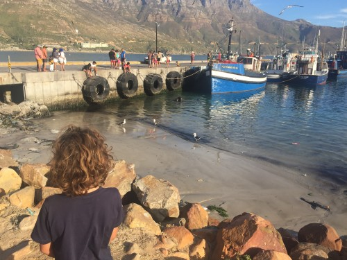 Sprehod po Haut Bay, Cape Town